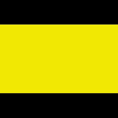 Elisa Zorzella